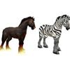 horse&zebra